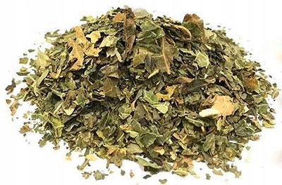 Полезные свойства чая из Папайи