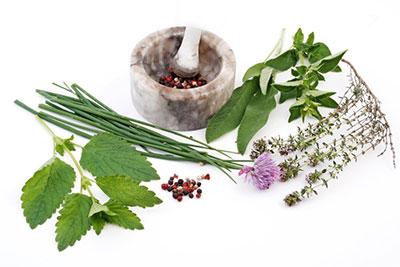 Особенности использования лекарственных растений